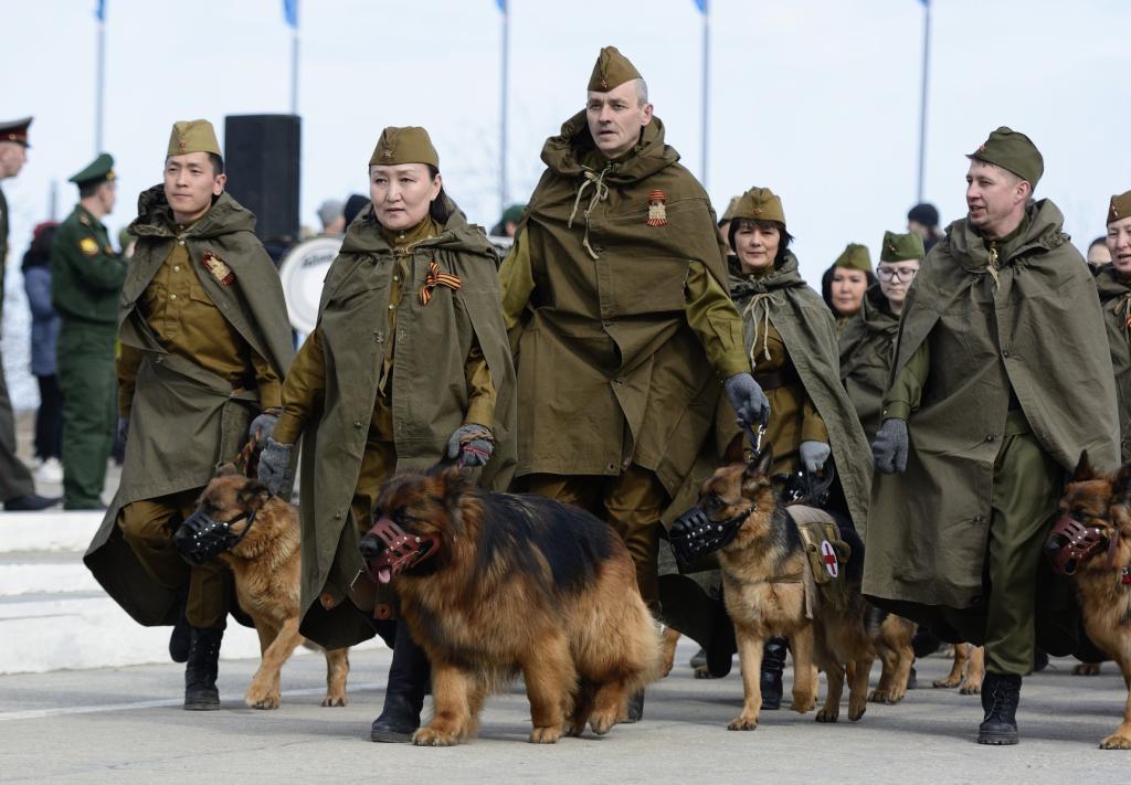 На параде - только безопасные собаки: перед Днем Победы в Петербурге четвероногих привьют от коронавируса
