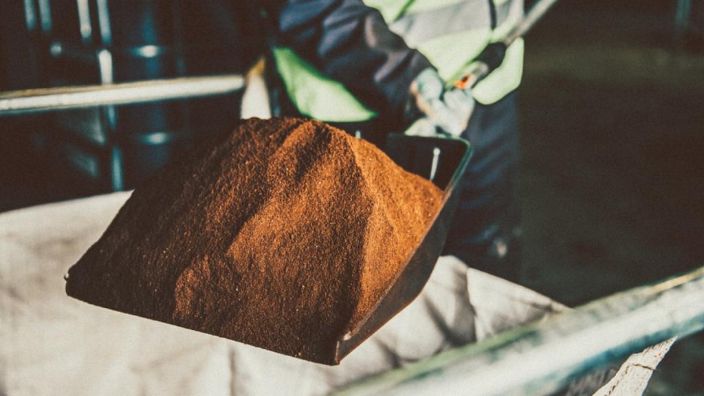 Экологи: кофейная масса и отходы кофейного производства могут ускорить восстановление тропических лесов
