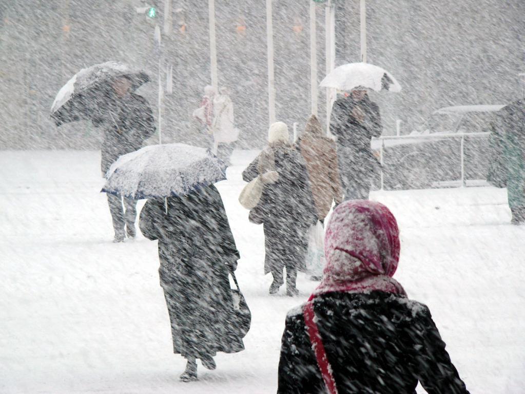"""""""Холодно, сыро, ветрено и на душе не очень весело"""": россиянам рассказали о причинах роста вирусных заболеваний весной"""