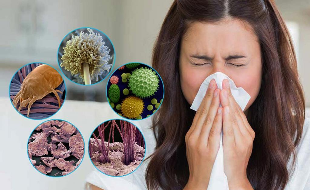 Врач и телеведущий Евгений Комаровский назвал основные симптомы, проявляющиеся при аллергии