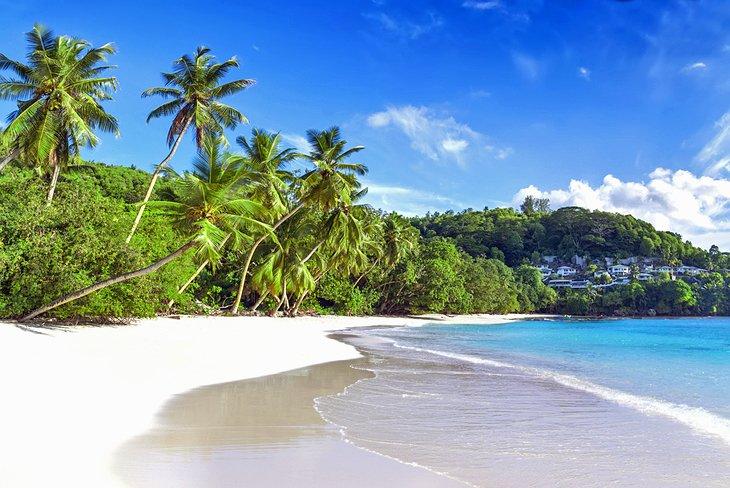 Сейшелы ждут россиян: как выгоднее добраться до островов и какие достопримечательности стоит посетить в первую очередь