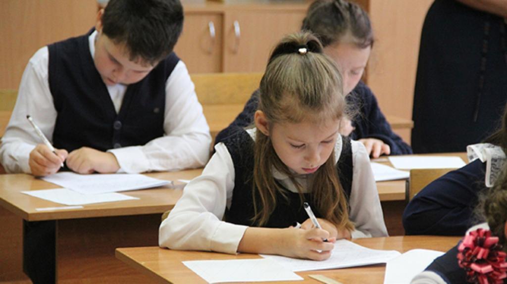Родители российских школьников рассказали о тратах на репетиторов: чем старше ребенок, тем больше средств уходит на обучение