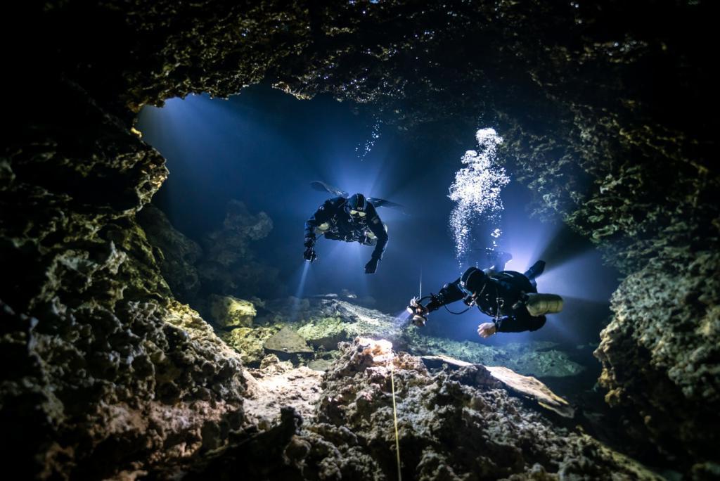 О чем умалчивают рыбы: лучшие подводные фотографии с конкурса 2021 года