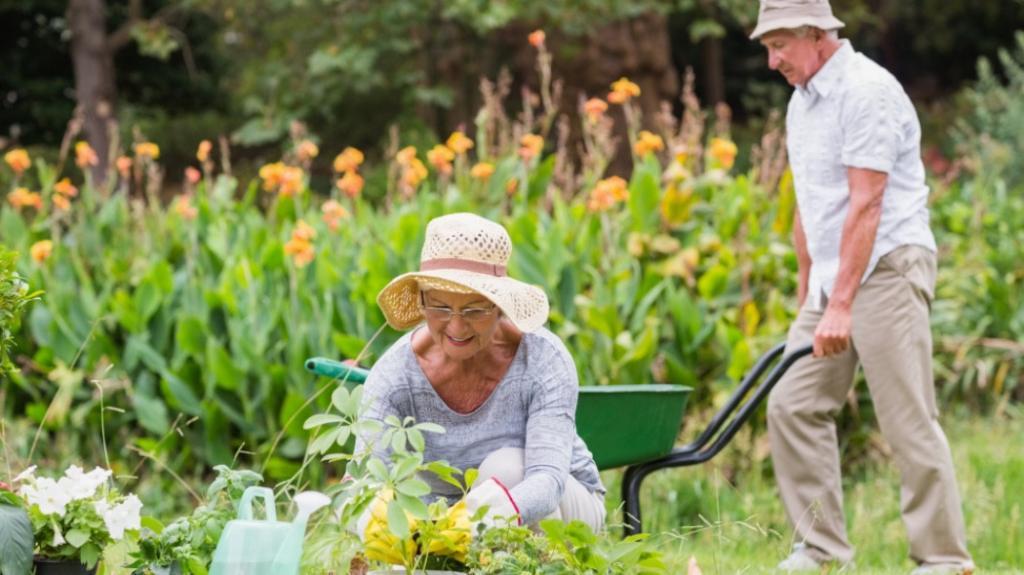 Постепенные нагрузки: пенсионерам напомнили правила подготовки к дачному сезону