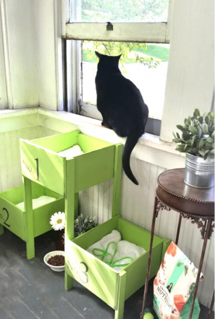 Как из старых ящиков сделать удобную кровать для котов. Она смотрится мило и нравится питомцам