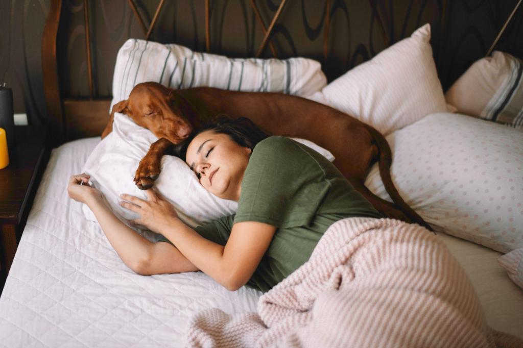 Женщины так лучше высыпаются: почему не стоит препятствовать собакам спать с хозяевами