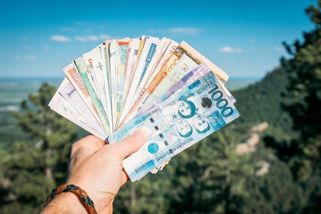Россияне, купившие полисы страхования для путешествия в Турцию и Танзанию, из-за ограничения авиасообщения получат свои деньги обратно