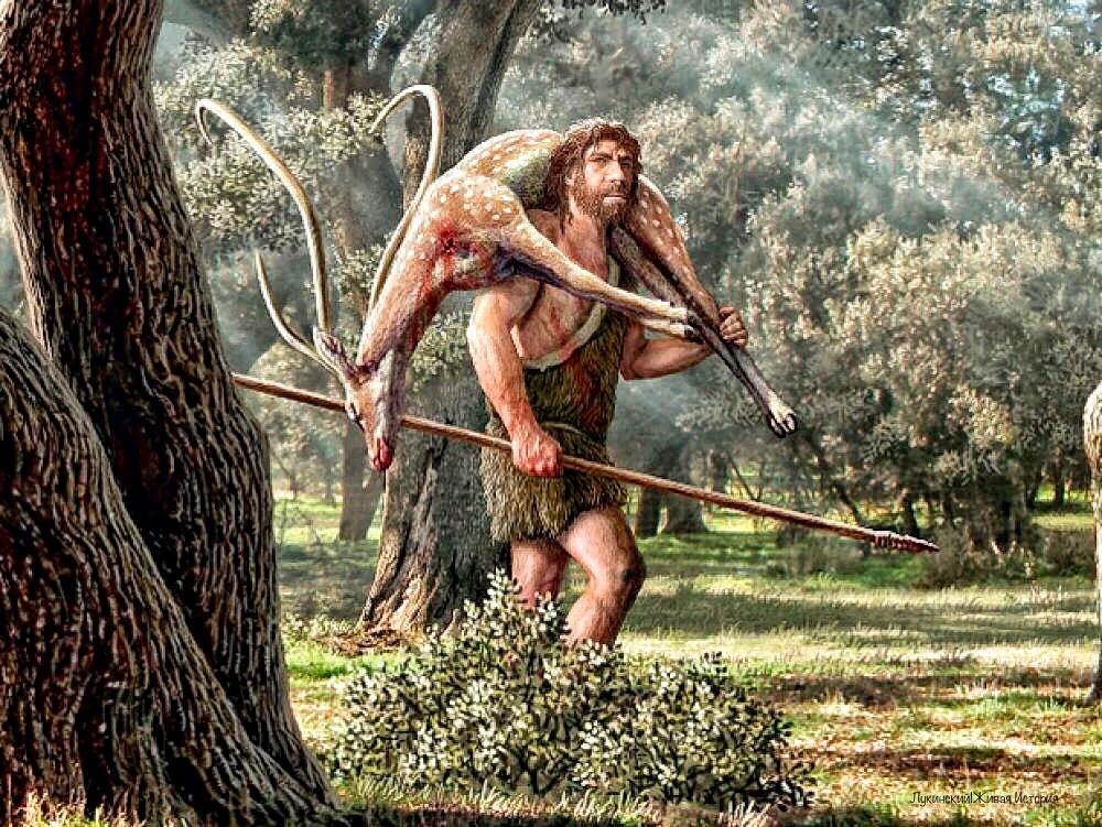Мужчины работали с деревом, женщины - со шкурами животных: ученые узнали, как разделялся быт у древних людей в зависимости от пола