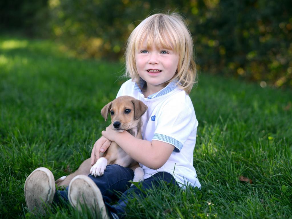 Подготовить ребенка и питомца: какого щенка подарить ребенку и на что обратить внимание - важные советы
