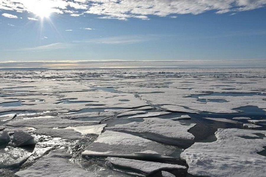 Российские климатологи считают, что глобальное потепление «вернет» Землю на 35 миллионов лет назад