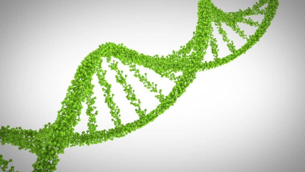 Природные ГМО: как растения и животные крадут гены у других видов, чтобы ускорить эволюцию