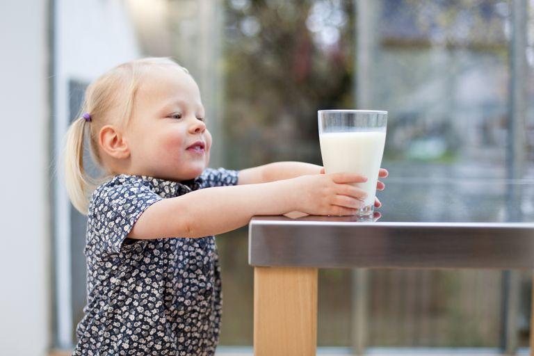 Ждите молоко, безопасное для аллергиков: уральские ученые принимают участие в создании генетически модифицированного крупного рогатого скота