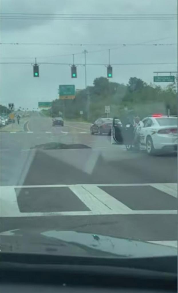 Аллигатор гуляет по проспекту среди машин: женщина снимала видео, сидя в салоне своего автомобиля