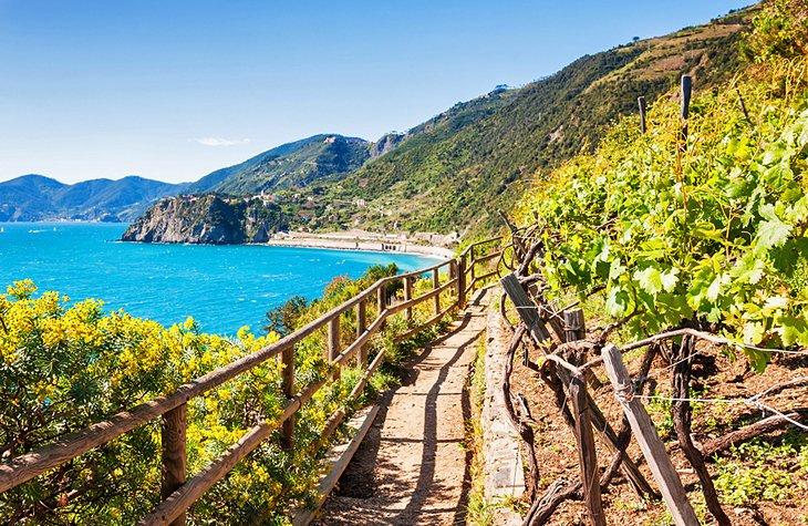 Италия возобновляет выдачу туристических виз россиянам: топ лучших вещей, которые можно сделать в этой южной стране