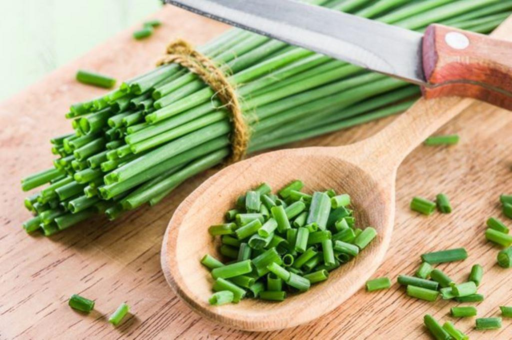 Раскрыт секрет долголетия: зеленый лук укрепляет сердце и снижает уровень холестерина