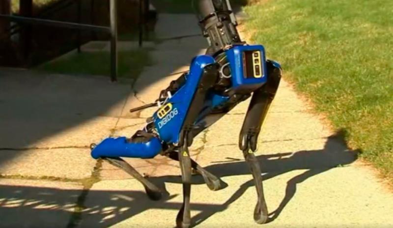 Собаки-роботы больше не будут патрулировать улицы Нью-Йорка. Почему полиция отказалась от них