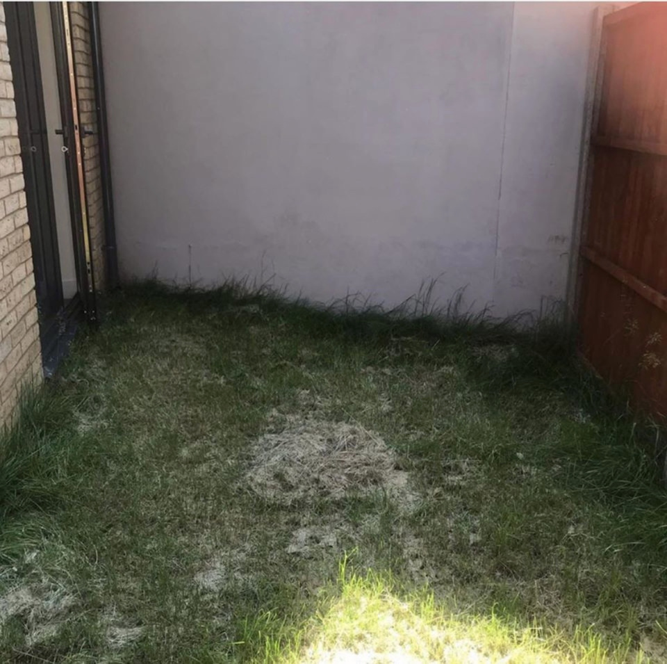 Темный маленький двор за высоким забором: идея, как превратить его в уютное место для отдыха