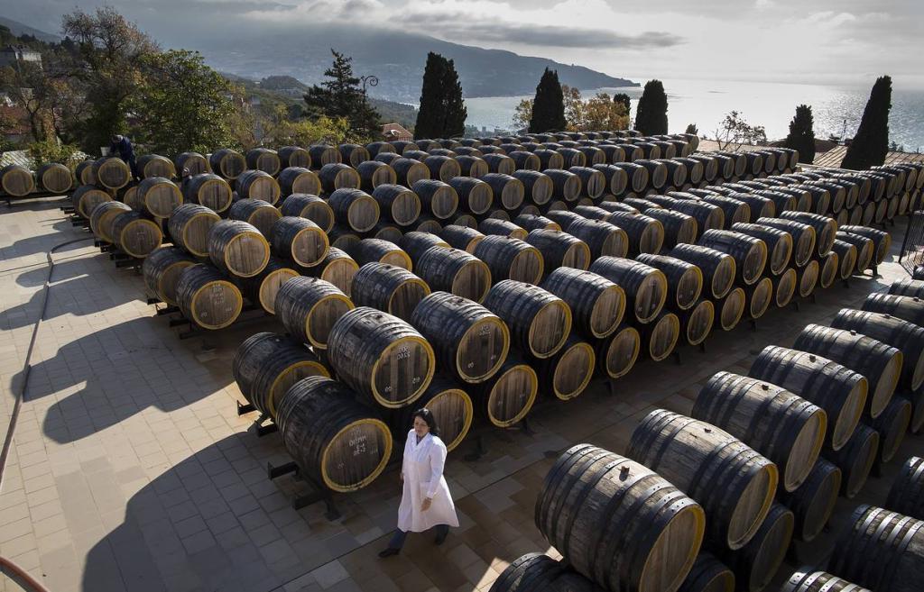 Российские специалисты собираются расшифровать геном диких дрожжей для производства вина. Это позволит избавиться от импорта составляющих