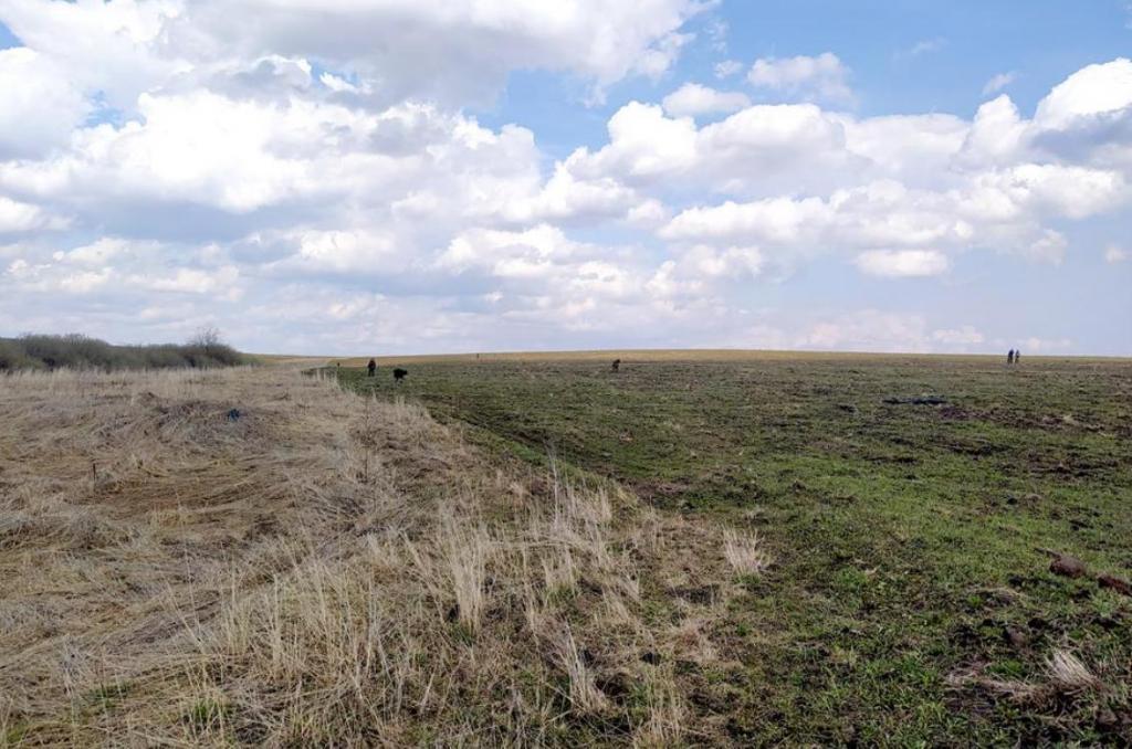 Тридцать ранее неизвестных средневековых поселений обнаружили археологи под Суздалем