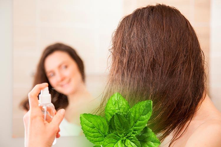 Балансирует рН-уровень и защищает от солнца: как использовать мяту в уходе за кожей, волосами и для улучшения здоровья