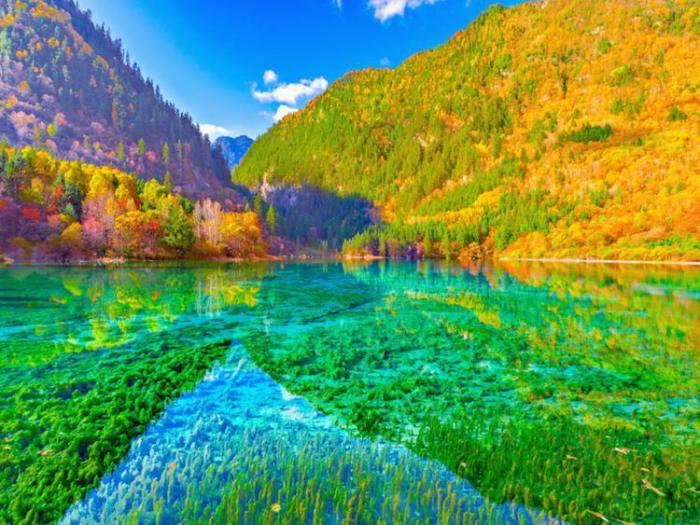 разноцветное озеро