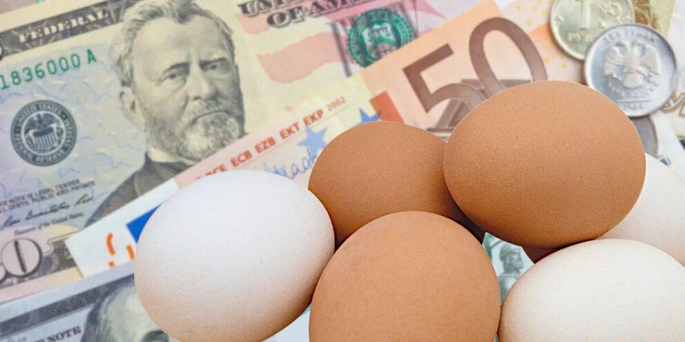 Обратная сторона вакцины: Россия находится в полной зависимости от импорта специальных яиц