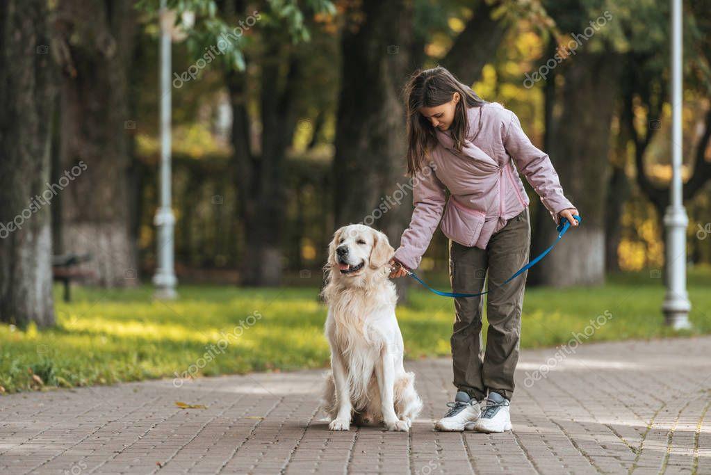 Никакой лишней энергии: как научить собаку быть послушной