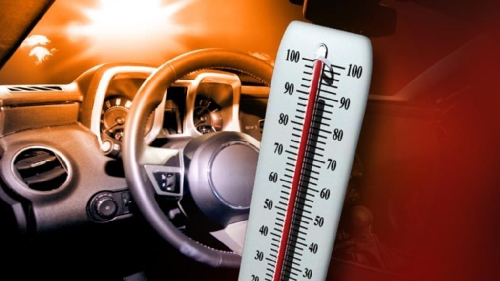 Пятилитровка водички выручит: простые способы охладить салон автомобиля в жару