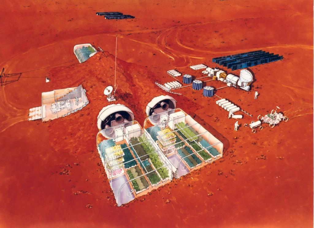 Космические агентства будут растить еду в будущем на Марсе и Луне