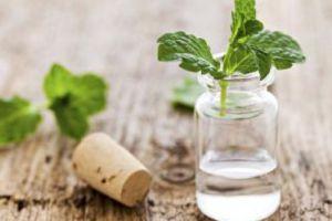 Интересные факты о самых «зимних» эфирных маслах