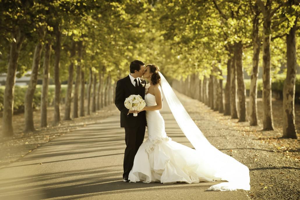 Свадебные большие картинки