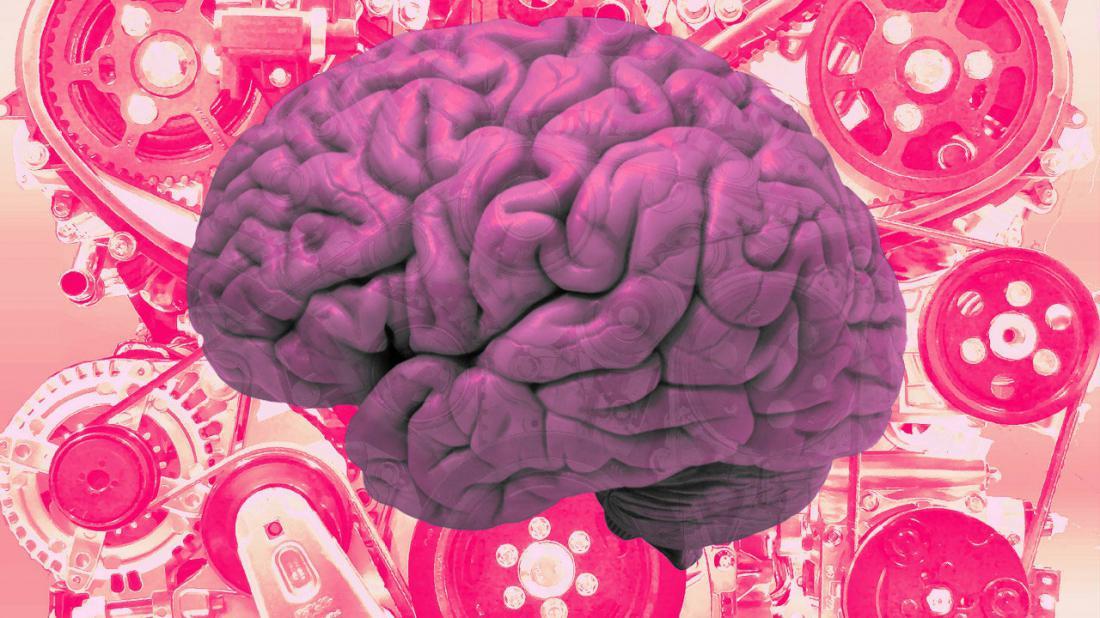 Картинка с мозгами и надписью мозги