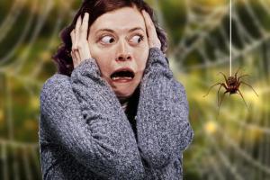 Почему появляется боязнь насекомых и как с этим справиться?