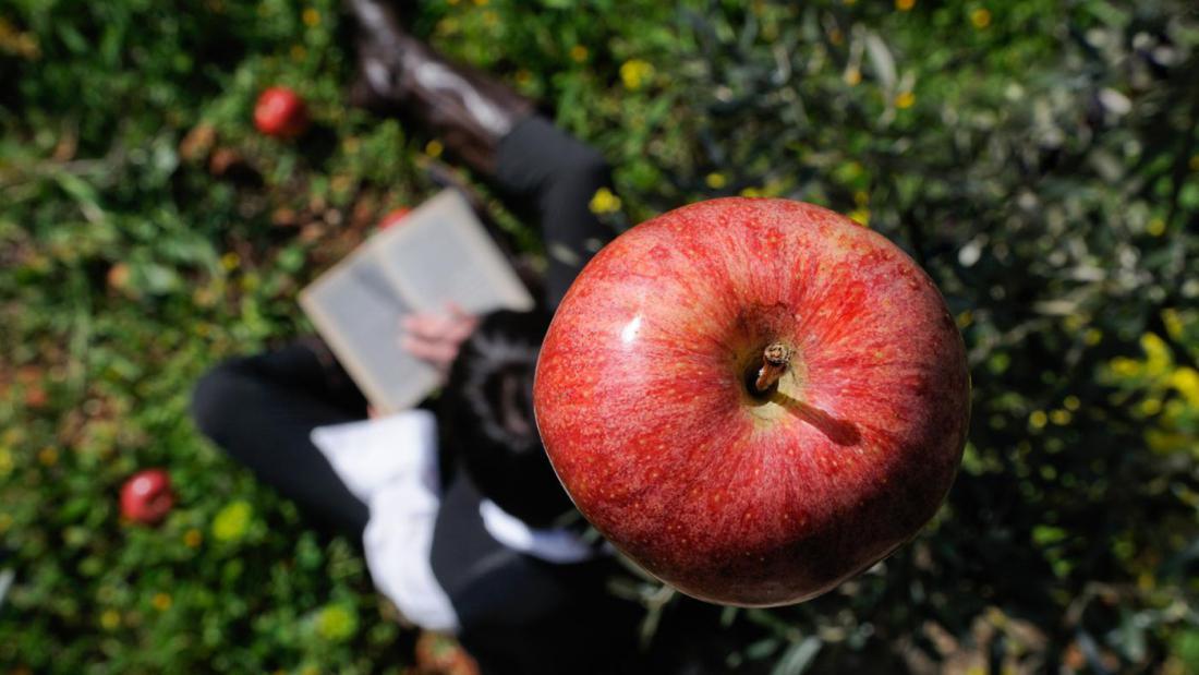 фото-сессии яблоко на голове картинки материком остров связывает