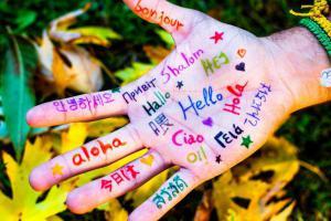 Как использовать знание иностранного языка для заработка?