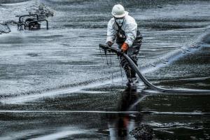 Исследователи обнаружили бактерии, которые могут помочь уничтожить нефтяные пятна в океане