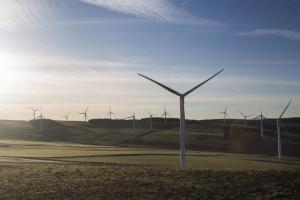 В прошлом месяце Шотландия продемонстрировала значительные успехи в использовании возобновляемой энергии ветра