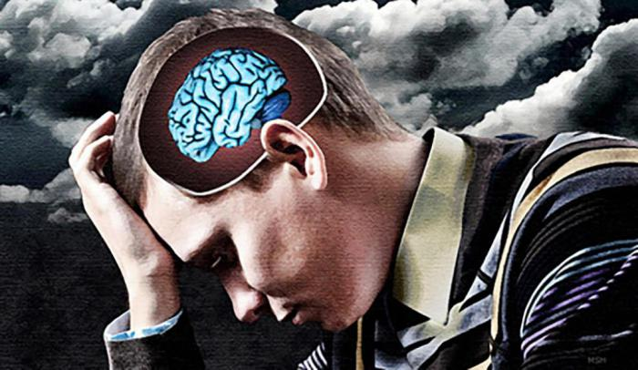 Объем мозга