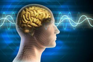 Что нужно делать сегодня, чтобы в старости ваш мозг идеально функционировал?