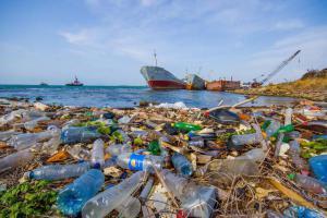 В море к 2050 году пластика будет больше, чем рыбы!