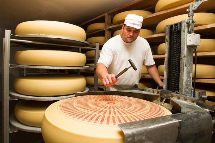 Как открыть производство сыра обстоятельство, что