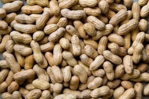 7 полезных орехов и 7 орехов, которые нельзя есть