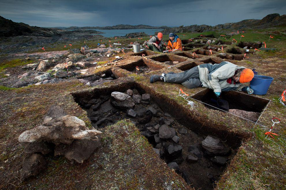 evidence of vikings and african presence