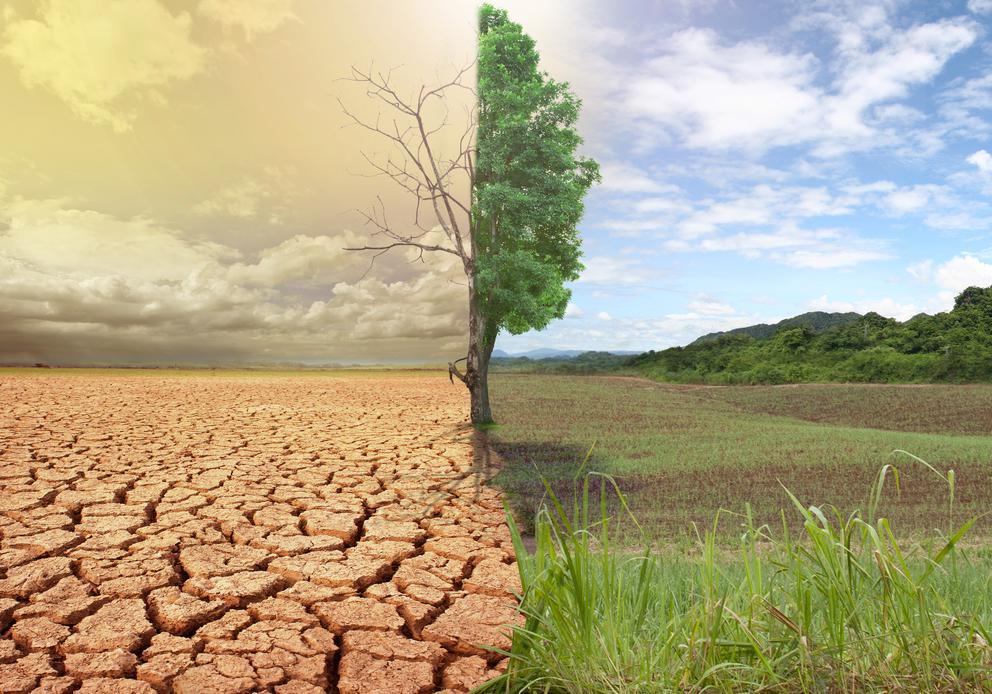 Глобальная проблема изменения климота