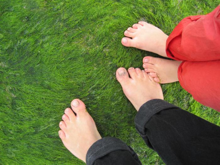 болят пальцы на ногах что делать