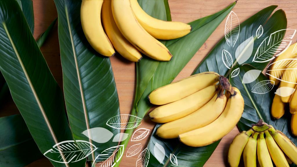 Факты, узнав о которых вы будете есть меньше бананов