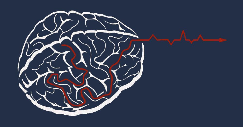 3 признака того, что у вас высокий IQ