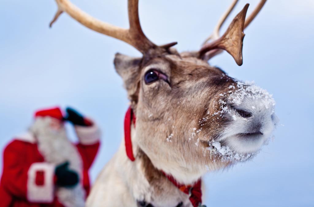 Санта до сих пор в шоке: самые жуткие и странные детские пожелания