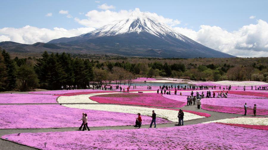 Самые красивые места Японии: что посмотреть в Стране восходящего солнца