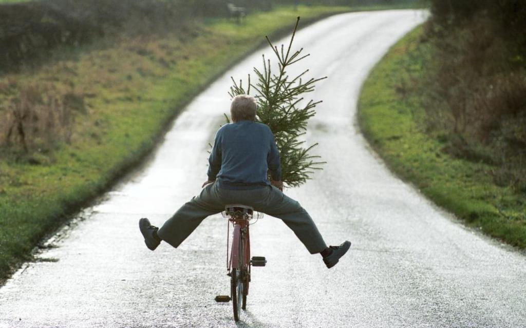 Не спешите выбрасывать новогоднюю елку, она может пригодиться в хозяйстве